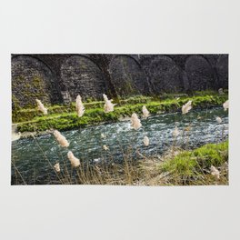 Blooming Reeds Growing along the Alzette River in Luxembourg City, Luxembourg Rug