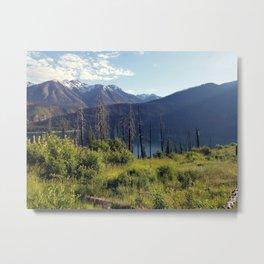 Summer Trails Metal Print