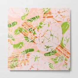 Soft summer Astrophytum asterias Metal Print