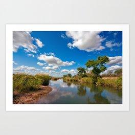 Kruger Park Landscape Art Print