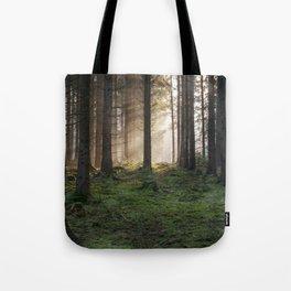 Winter Sunbeams Tote Bag