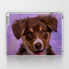 Border Collie Puppy Laptop & iPad Skin