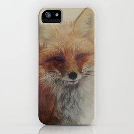 Fox Portrait iPhone Case