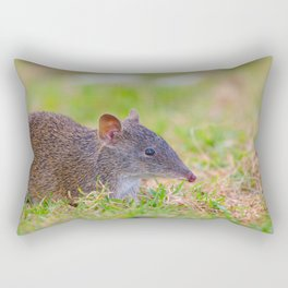 A Cute Bandicoot Out Foraging Rectangular Pillow
