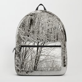 Snow Trail Backpack