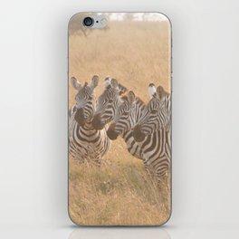 Zebras at Sunrise iPhone Skin