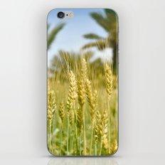 Cornfield iPhone & iPod Skin
