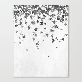 Hand Printed Black and White Trailing Ivy Canvas Print
