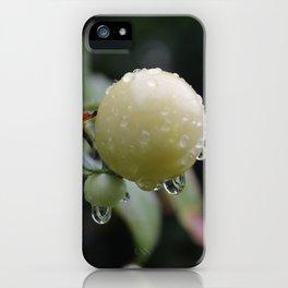DewyTomatos iPhone Case