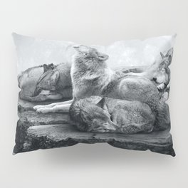 Echoes of a Lullaby Pillow Sham