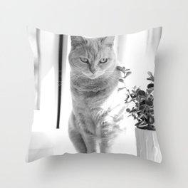Esmeralda - On The Windowsill Throw Pillow