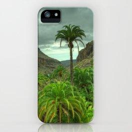 Palmitos Palms iPhone Case