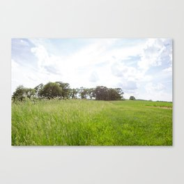 Country Days Canvas Print