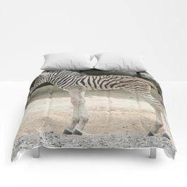 Zebra_2014_1001 Comforters