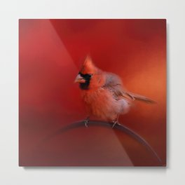 Radiant Red Bird Metal Print