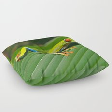 Green Tree Frog Red-Eyed Floor Pillow