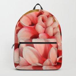 Dahlia 71 Backpack
