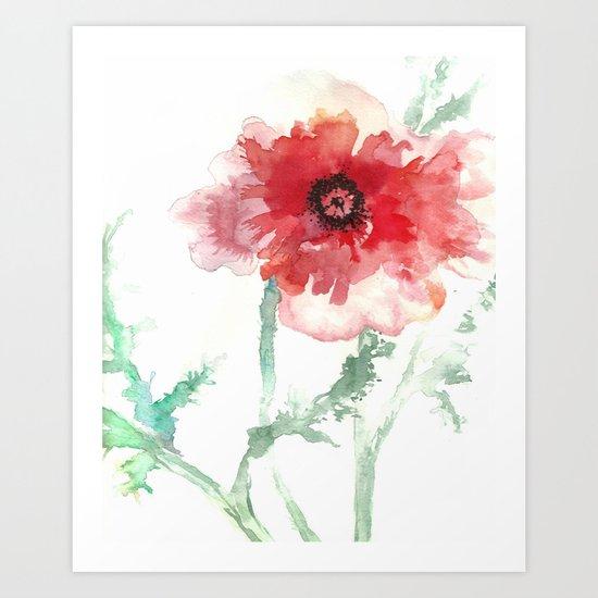 Poppy Watercolor Art Print