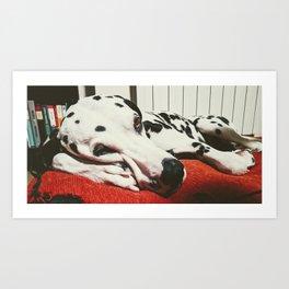 Kenzo, sleeping time Art Print