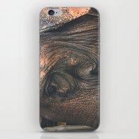 bon iver iPhone & iPod Skins featuring Bon by Emmylu
