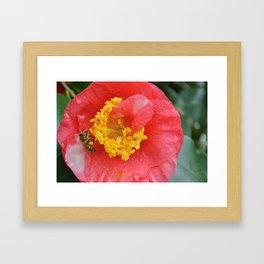 Flowers #39 (*Koinonia*) Framed Art Print