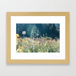FALL FIELDS | 01 Framed Art Print