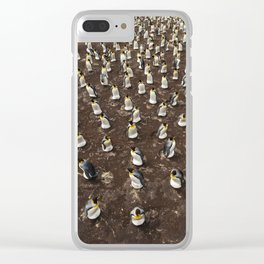 Penguin Colony Clear iPhone Case