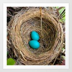 Two Little Robin's Eggs Art Print