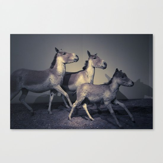the embalmed pony show Canvas Print