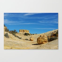 Beautiful rock boulder in a canyon Canvas Print