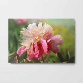 Pink Peony With Splash of Spring Metal Print