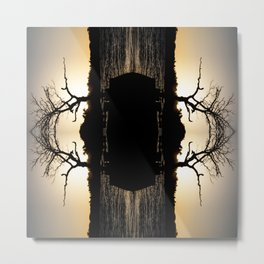 River's Eye Metal Print