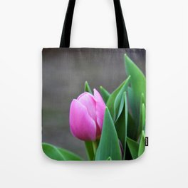 First Pink Tulip Tote Bag