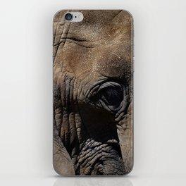 Elephant Portrait - Side iPhone Skin