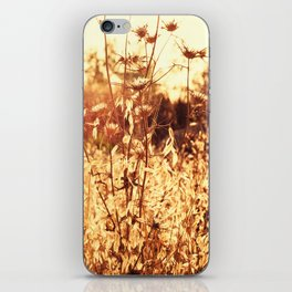 The Golden Hour iPhone Skin