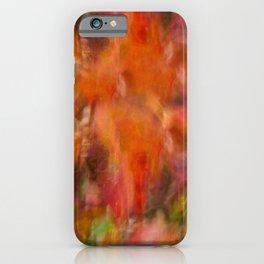 Autumn Smear iPhone Case