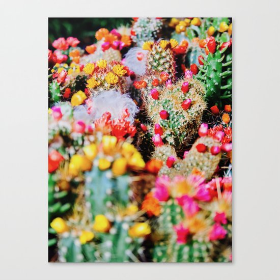 RAINBOW CACTUS CLUSTER PATTERN Canvas Print