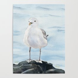 Seagull 2 Poster