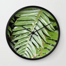 Overexposed Fern Wall Clock
