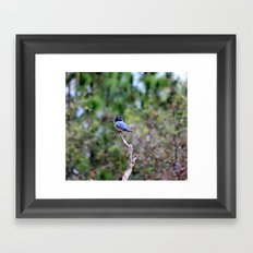 Perilously Perched Framed Art Print