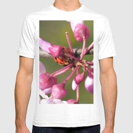 Flowering Redbud with Ladybug T-shirt