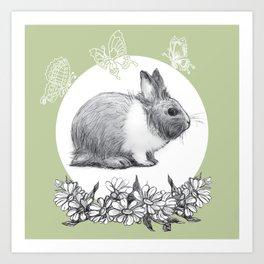 Rabbit fluffy gray on a green background Art Print