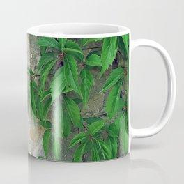 Natural Wall Coffee Mug