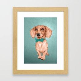 Dachshund, The Wiener Dog Framed Art Print