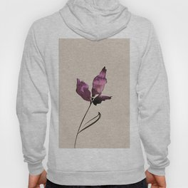 Floral Abstract No.2q by Kathy Morton Stanion Hoody