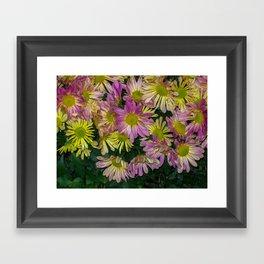 Flowers having a meeting Framed Art Print