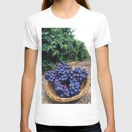 Grape Vineyard T-shirt