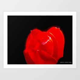 Red Red  Art Print