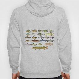 Freshwater Fish Group Hoody