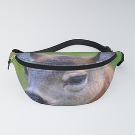 Sitka Black-Tail Fawn Fanny Pack